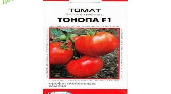 Все о томатах. выращивание томатов. сорта и рассада.