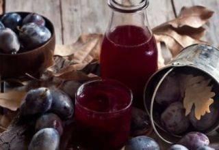 Компот из сливы на зиму: рецепты на 1-3 литровую банку с фото