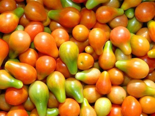 Описание сорта томата Грушка консервная, его характеристика и урожайность