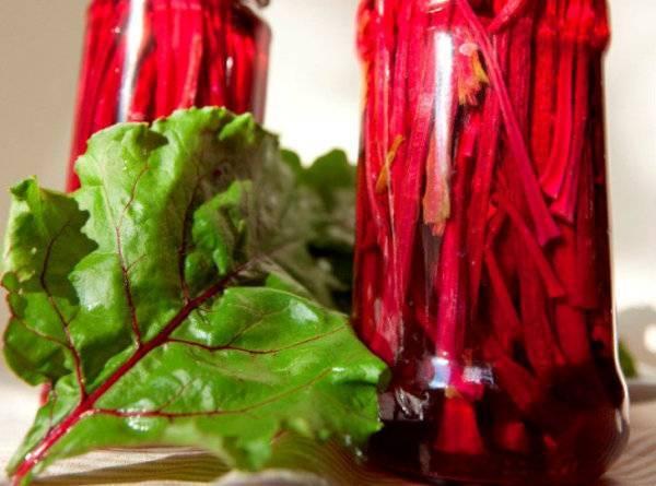 Свекла: лучшие рецепты вкусных заготовок на зиму