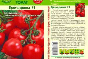 Томат примадонна: отзывы, фото, урожайность, характеристика и описание сорта, достоинства и недостатки
