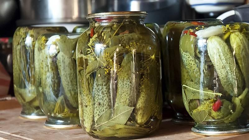 Закатываем вкусные маринованные огурцы в масле – гости попросят рецепт