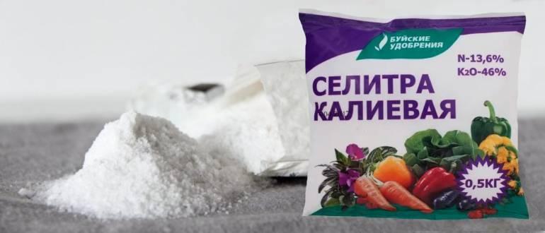 Способы использования кальциевой селитры для удобрения