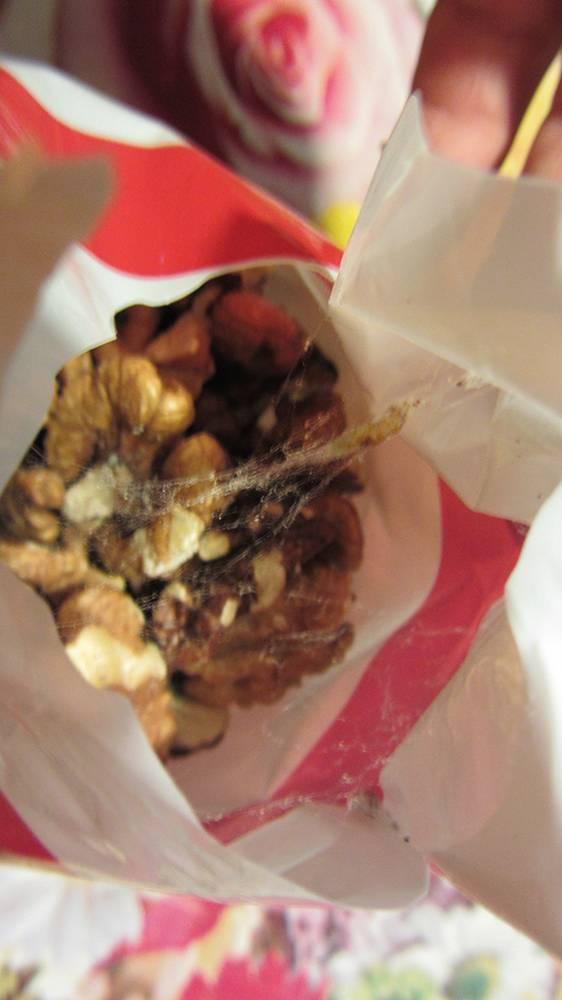 Болезни грецкого ореха: ставим правильный диагноз