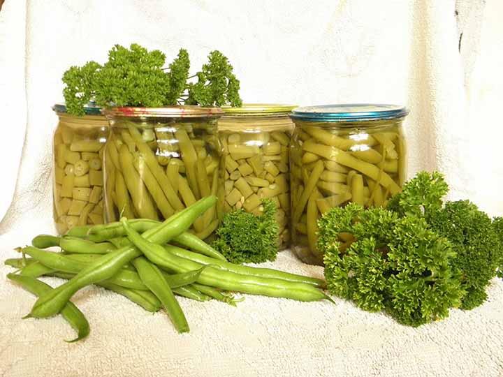 Спаржевая фасоль. простые рецепты приготовления на зиму: консервация и заморозка