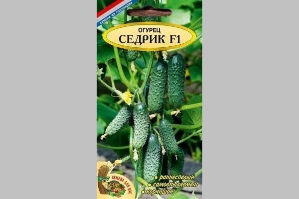 Сорта огурцов f1