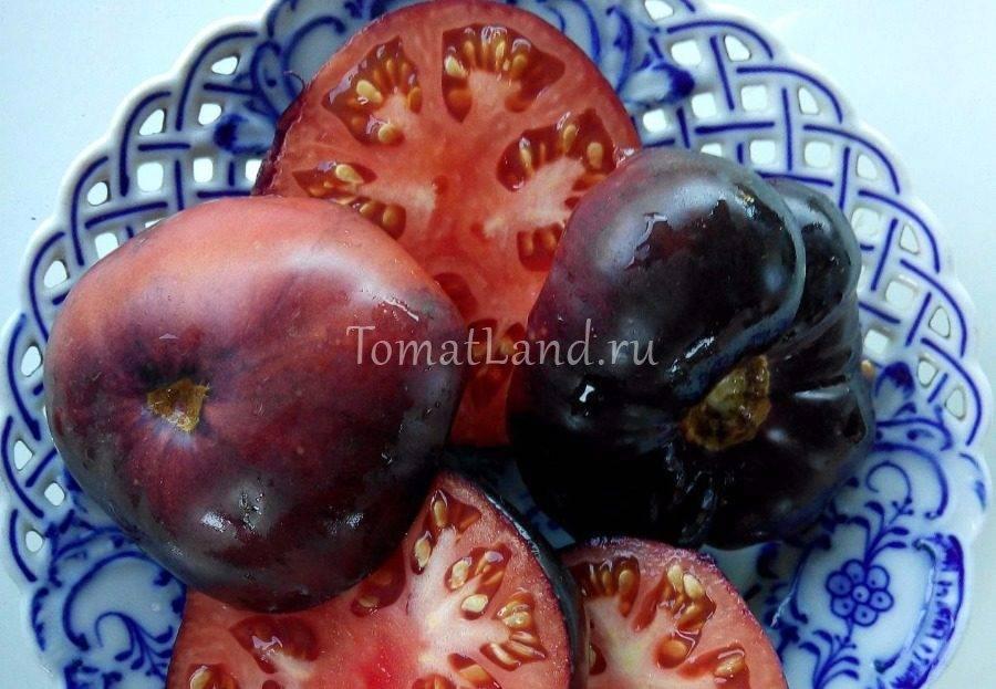 Обзор томата аметистовая драгоценность: фото, особенности