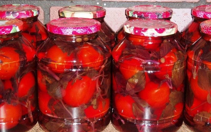 Маринованные помидоры на зиму: ну очень вкусные рецепты