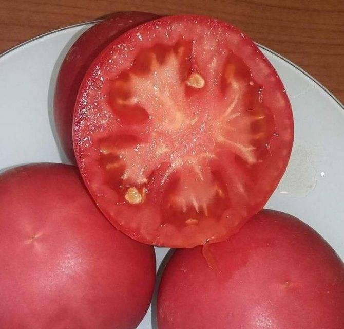Томат пинк парадайз: особенности и преимущества сорта, правила выращивания, отзывы