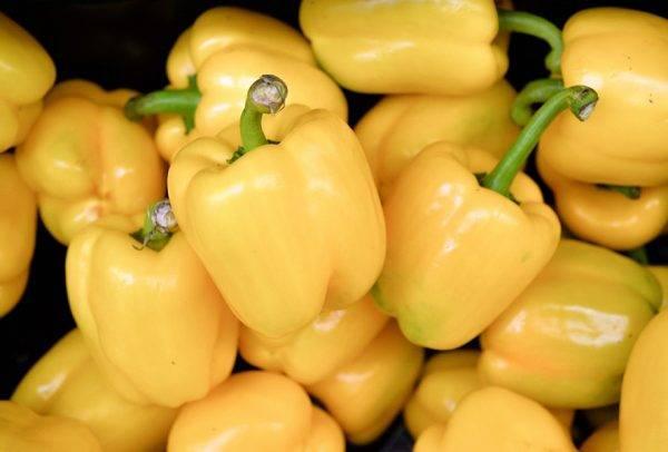Перец желтый колокол: описание сорта, фото