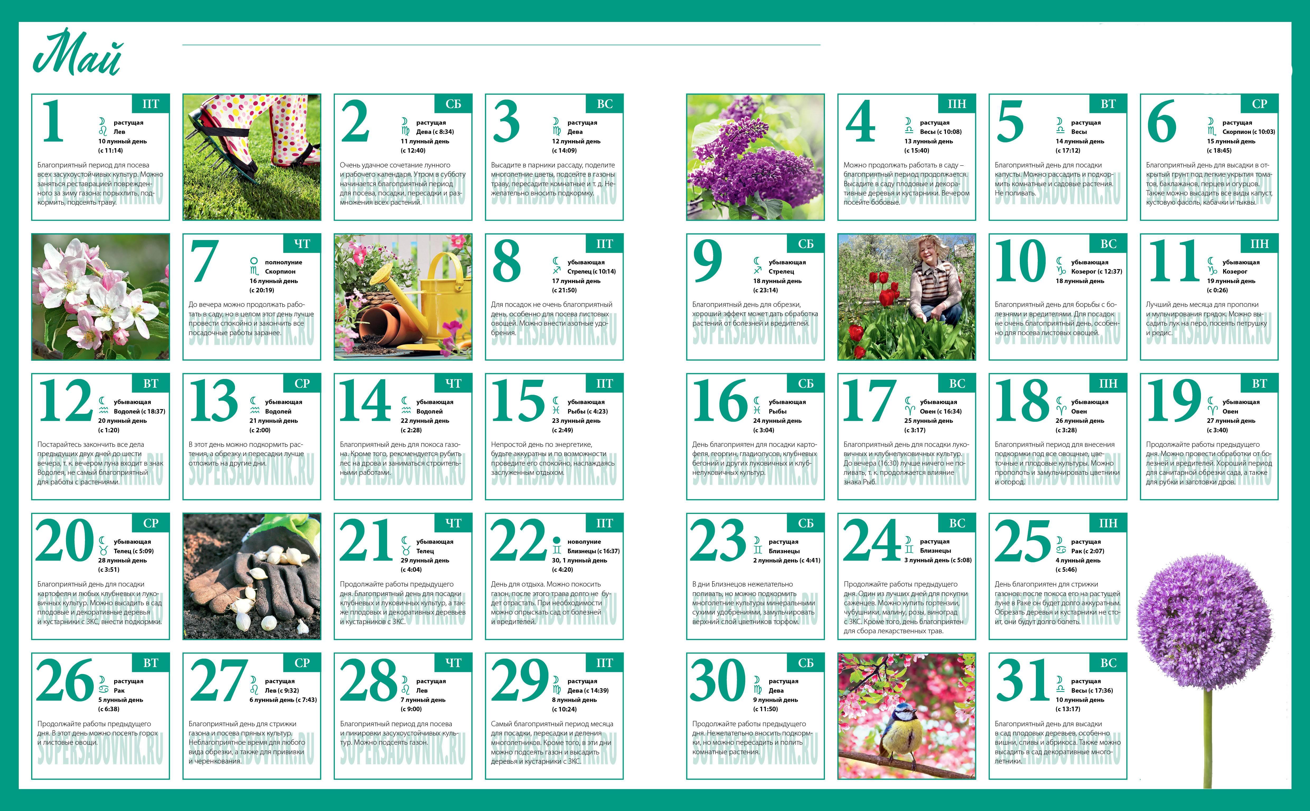 Лунный посевной календарь садоводов и огородников на 2019 год