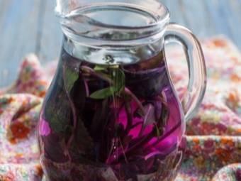 Базилик. полезные свойства и противопоказания. рецепты заготовок на зиму: компот, суп, салат, песто