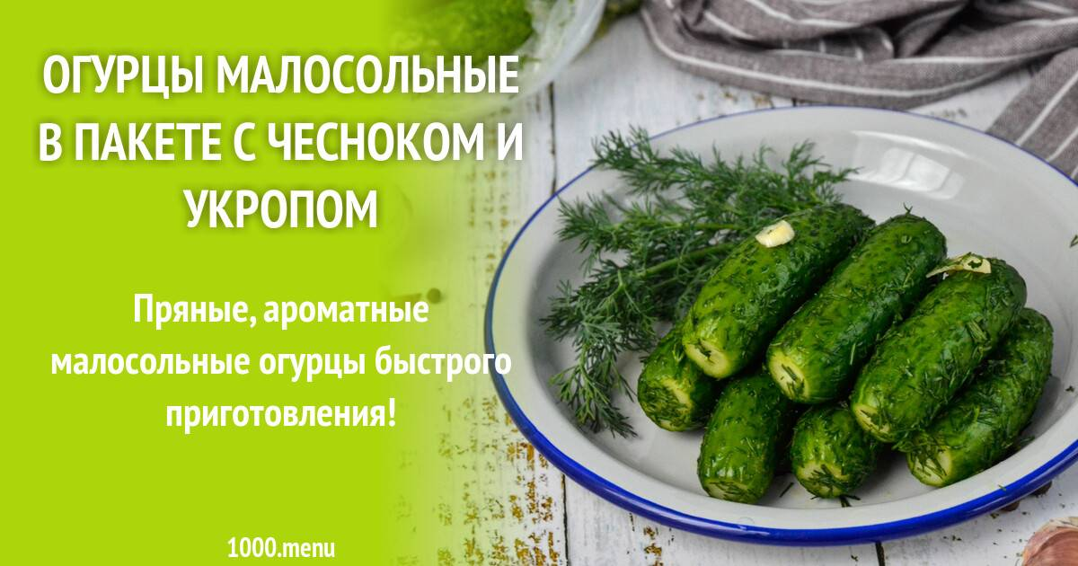 Малосольные огурцы — 7 рецептов быстрого приготовления с чесноком и зеленью