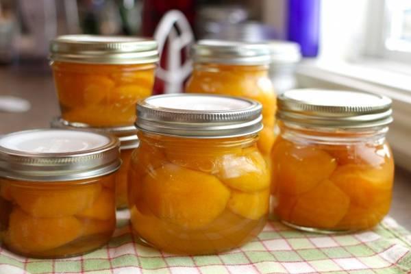 Что приготовить из абрикосов на зиму – самые лучшие домашние закатки