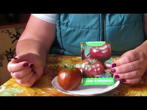 Томат зефир в шоколаде: отзывы, фото, урожайность