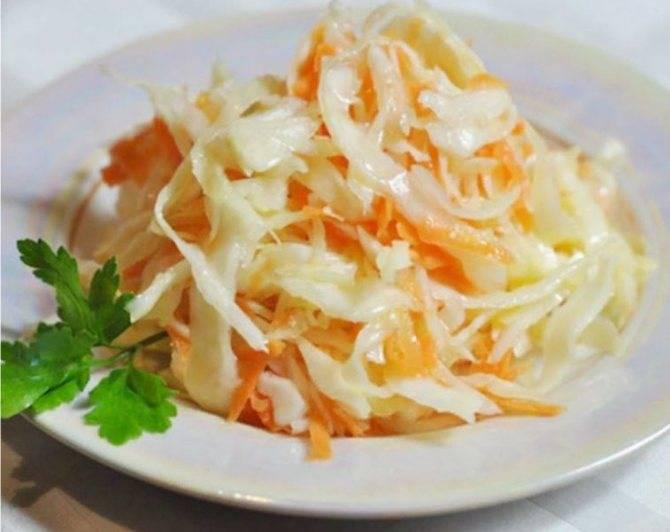 Квашеная капуста быстрого приготовления — вкусные рецепты хрустящей и сочной капусты