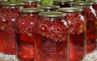 Самые простые рецепты компота из красной смородины без стерилизации в 3 литровой банке