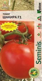 Описание сорта томата шарада его характеристика и урожайность