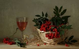 Вино из замороженной черноплодной рябины