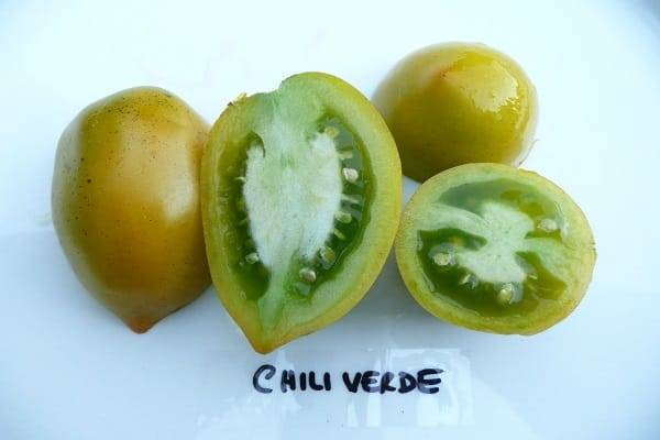 Описание сорта помидора Чили Верде, особенности выращивания и ухода
