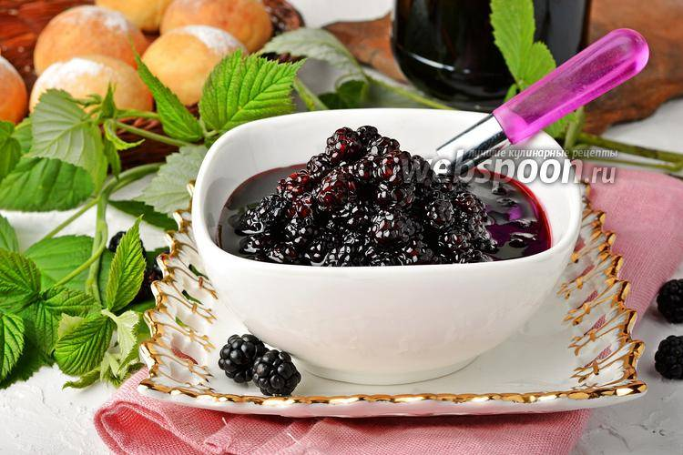 Что из ягод ежевики можно сделать на зиму, 13 рецептов приготовления
