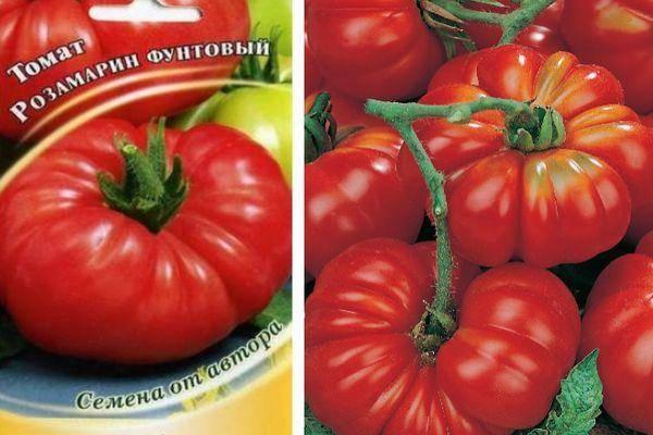 Томат розмарин f1: описание сорта и нюансы выращивания