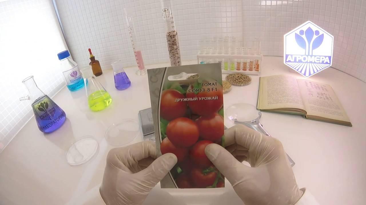 «де барао красный» — украшение вашего участка и высокий урожай томатов