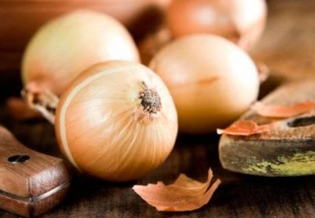 Молдавский лук халцедон: способы выращивания, уход и сбор урожая