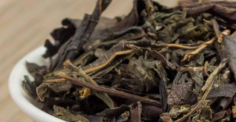 Лечебные свойства бадана для здоровья людей, противопоказания испособы использования