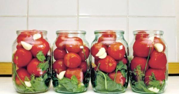 Помидоры по чешски самый вкусный рецепт. помидоры по чешски на зиму – рецепт без стерилизации. как правильно выбрать и подготовить томаты