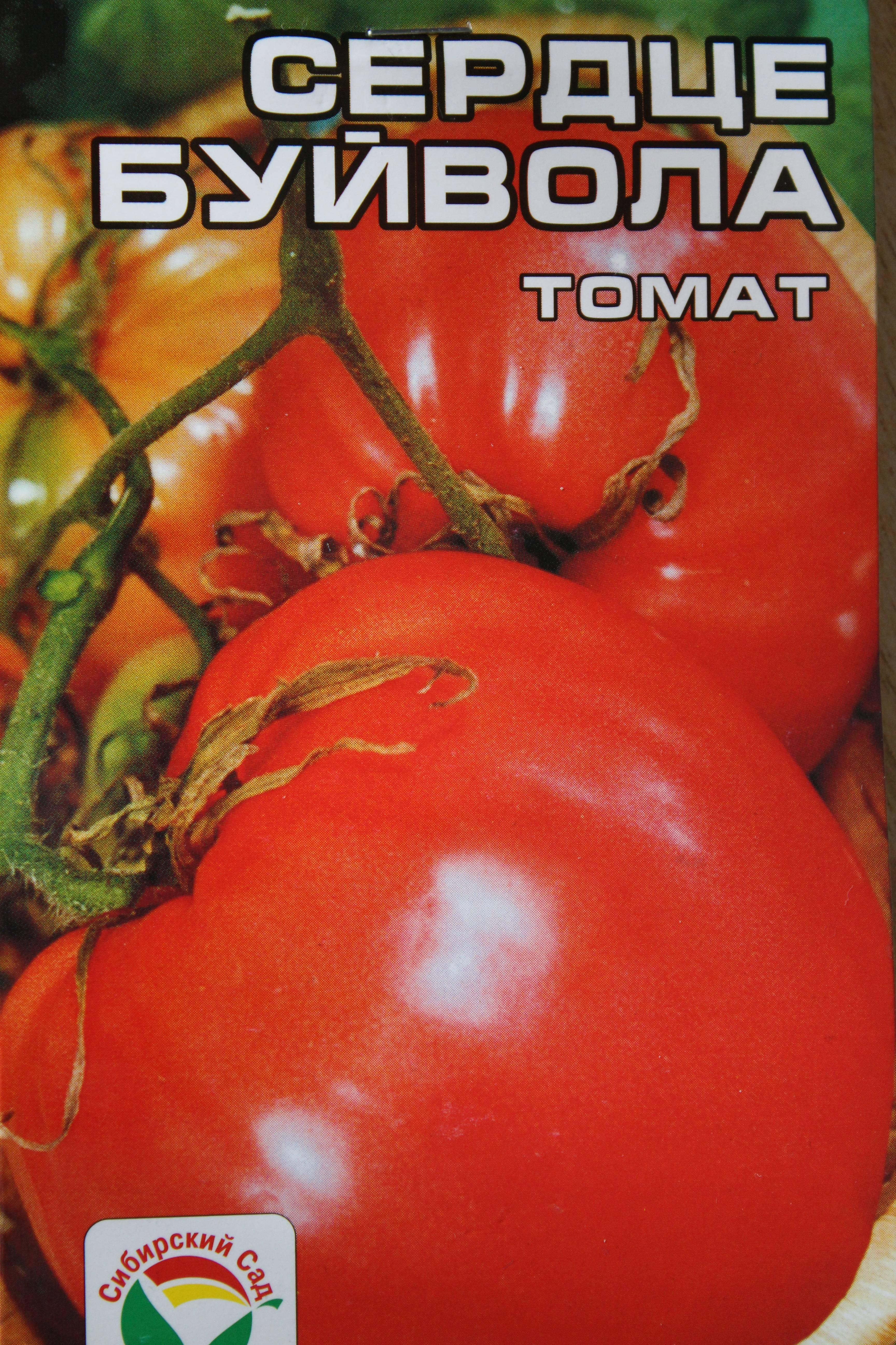 Описание сорта томатов боец (буян)