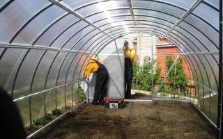 Выбираем почву для томатов в теплице: советы агротехников для высоких урожаев