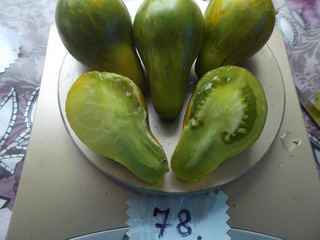 Малина полана: особенности выращивания высокоурожайного сорта