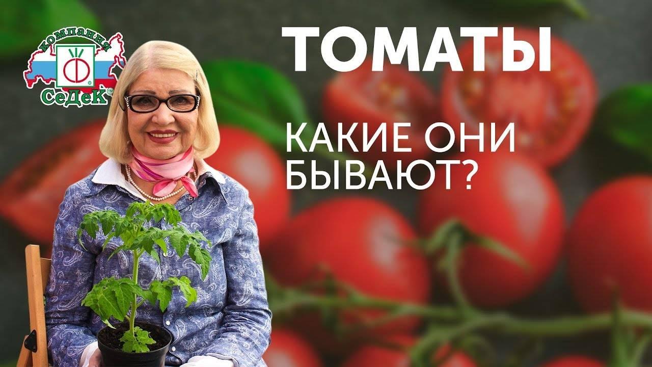 Характеристика и описание сорта томата Подарок женщине