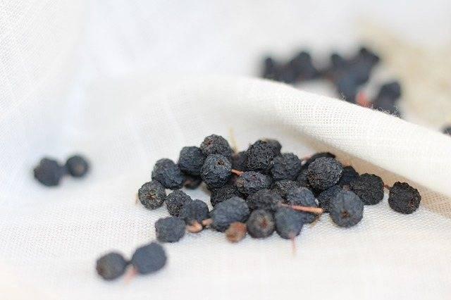 Вкусные заготовки на зиму из черноплодной рябины