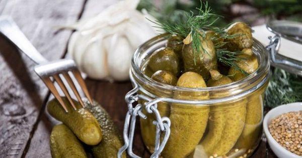 Малосольные огурцы в кастрюле с горячим рассолом – 7 классических рецептов быстрого приготовления