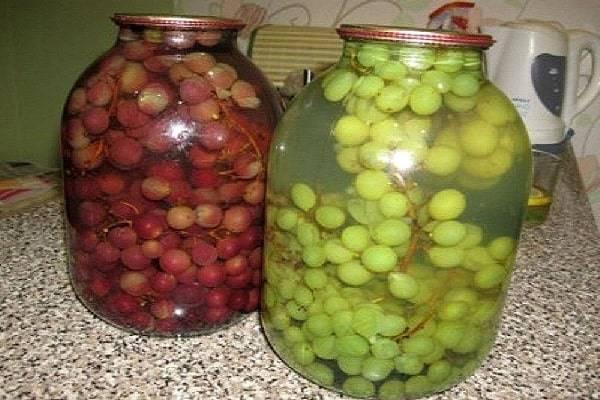 Заготовка винограда на зиму в домашних условиях: сок, компот, варенье