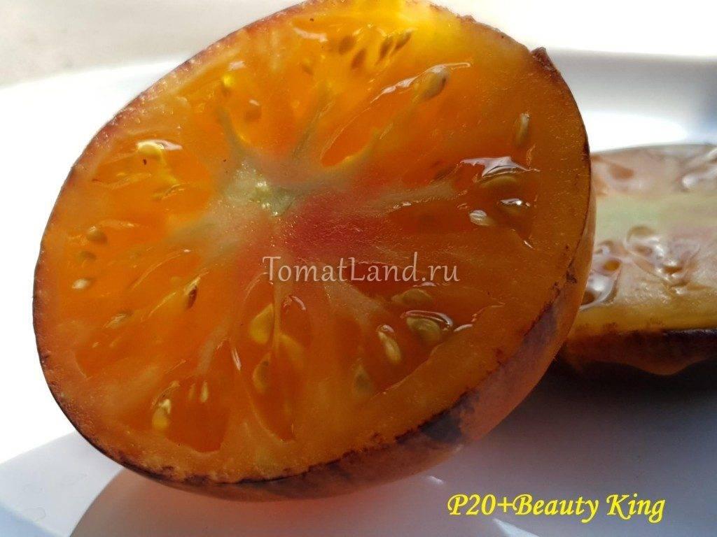 Описание сорта томата блю р20, особенности выращивания и ухода