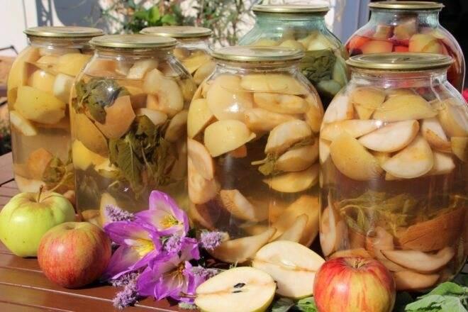 7 лучших рецептов приготовления повидла из яблок белый налив на зиму