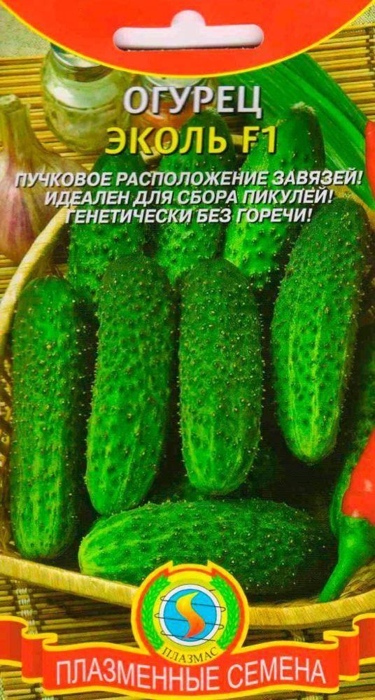 Корнишон эколь f1 – лучший сорт огурцов