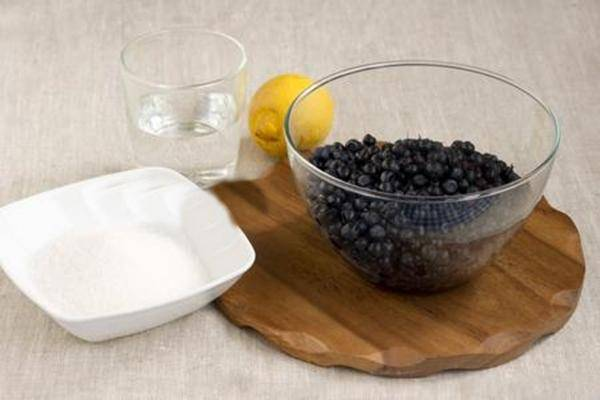 Черника на зиму: заготовки, рецепты, лучшие способы сохранить пользу и витамины
