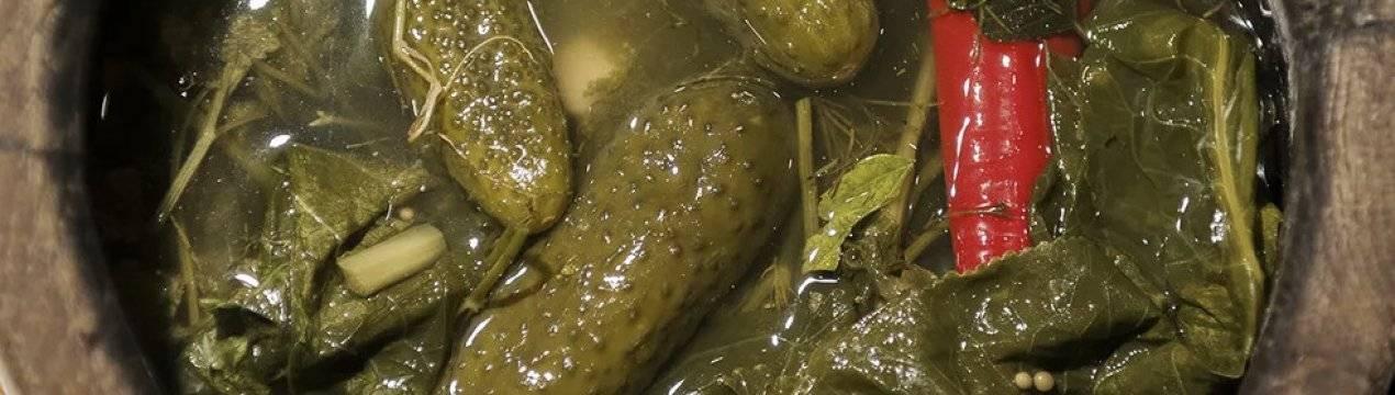 Соленые хрустящие огурцы в банках на зиму — простые и супер вкусные рецепты