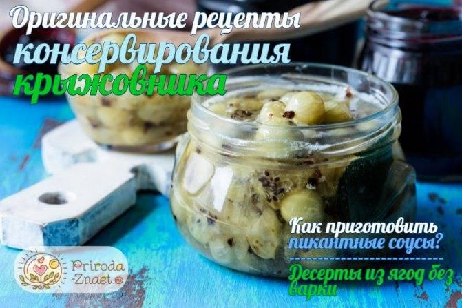 ТОП 12 рецептов приготовления острой закуски из огурцов на зиму