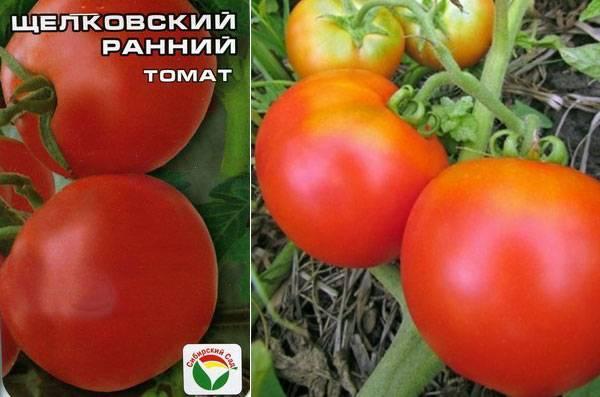 Томат щелковский ранний — описание и характеристика сорта