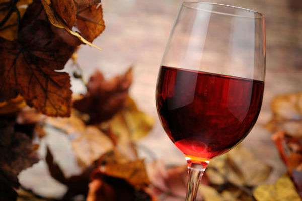 Домашнее вино из замороженной малины. домашнее вино из малины - общие принципы приготовления. вино из желтой малины в домашних условиях