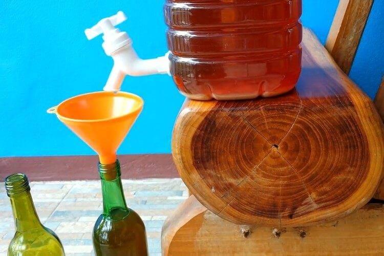 Вино из крыжовника - 10 простых рецептов в домашних условиях