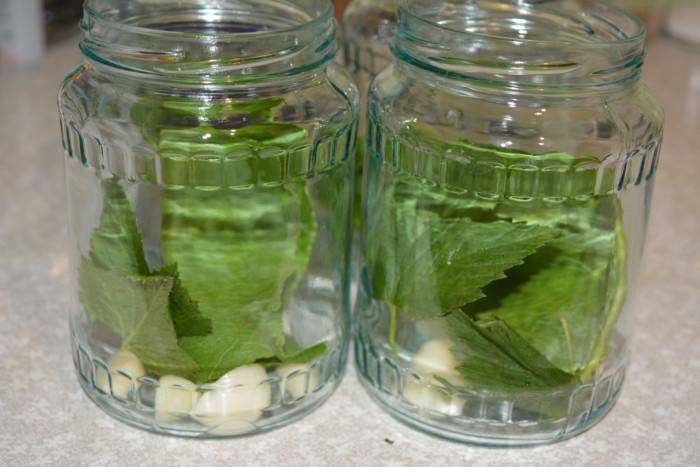 Лучшие рецепты заготовки огурцов дамские пальчики на зиму. салат дамские пальчики из переросших огурцов на зиму