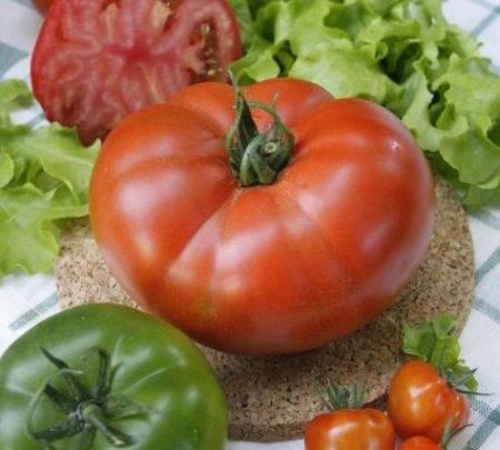 Описание сорта томата екатерина, его урожайность и выращивание