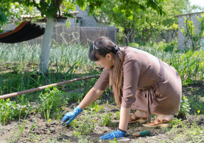 Народные средства от сорняков: избавляемся от травы раз и навсегда