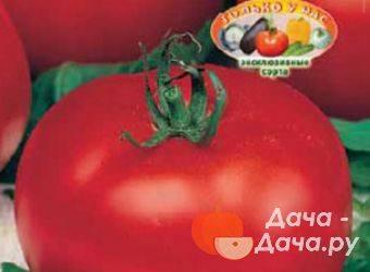 Томат янтарный характеристика и описание сорта, урожайность с фото